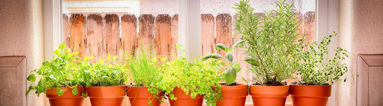 Garden Window Style, How Much Does A Garden Window Cost